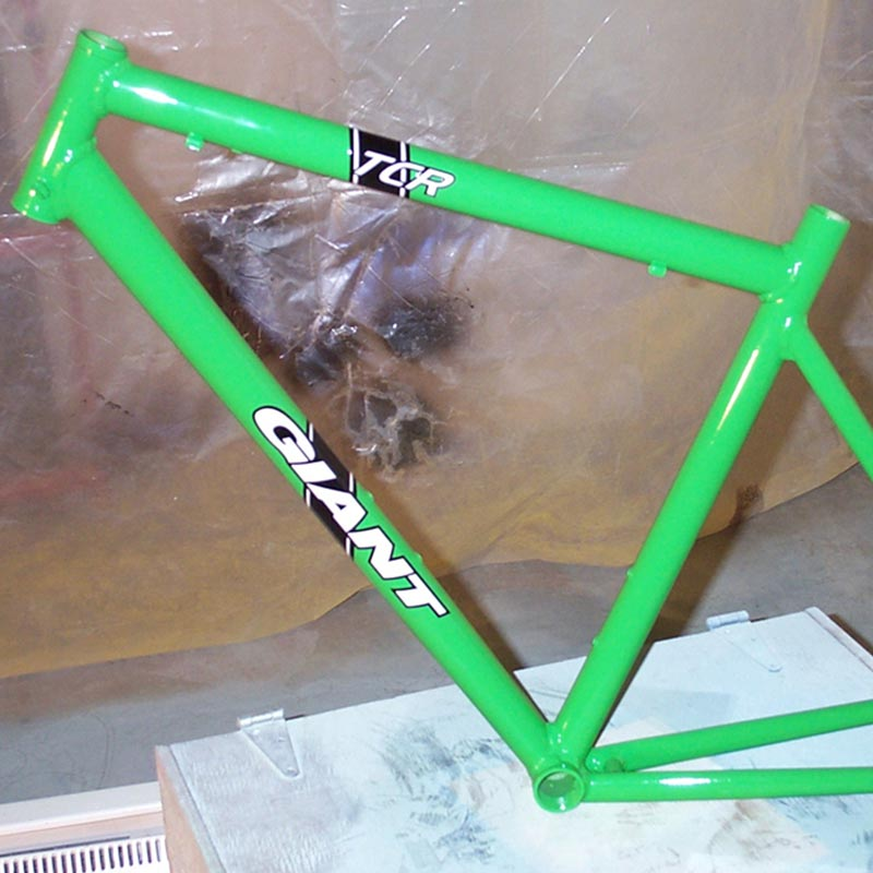 giant_tcr_green_1